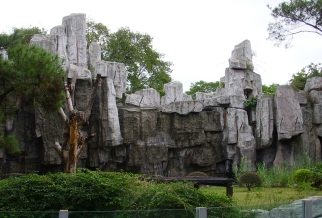 广州动物园猩猩馆假山景观